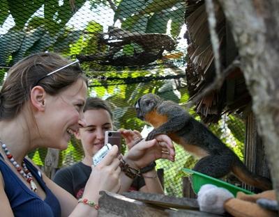 페루 아마존 환경보호 프로젝트에서 온순한 원숭이들을 보고 있는 여성 봉사자들