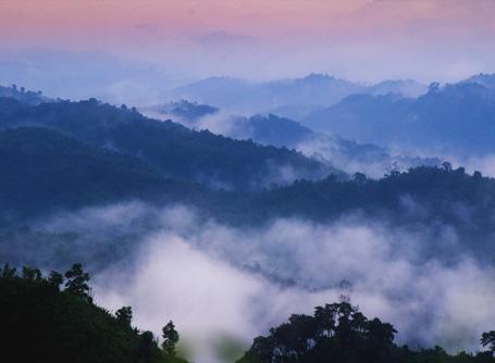 방글라데시 Sajek Valley 산에 안개가 쌓여있다