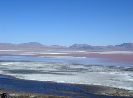 볼리비아 봉사활동