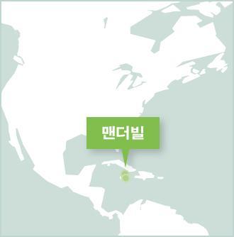 자메이카 멘더빌의 프로젝트 어브로드 활동지 지도