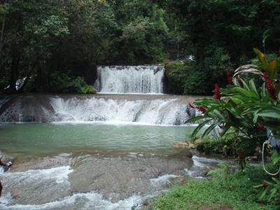 프로젝트 어브로드 자메이카 활동지 근처의 폭포