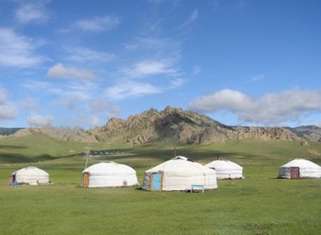 몽골 봉사활동