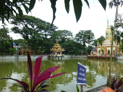 미얀마의 옛 수도인 양곤 강에서 달라 지역으로 이동함