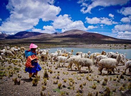 페루 봉사활동