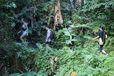 사모아 프로젝트 봉사자들이 열대우림을 모험하며 여가시간을 보내고 있다
