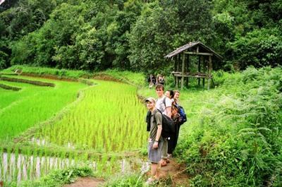 태국 프로젝트 어브로드 봉사자들이 현지 농지를 방문하고 있다