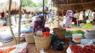 토고 여성이 야채를 판매하고 있다