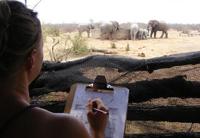 아프리카 사바나 환경보호 프로젝트 봉사자의 활동