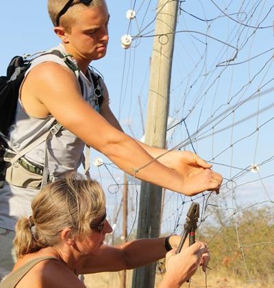 남 아프리카 환경보호 프로젝트 봉사자들이 야생 나무 관찰을 하고 있다