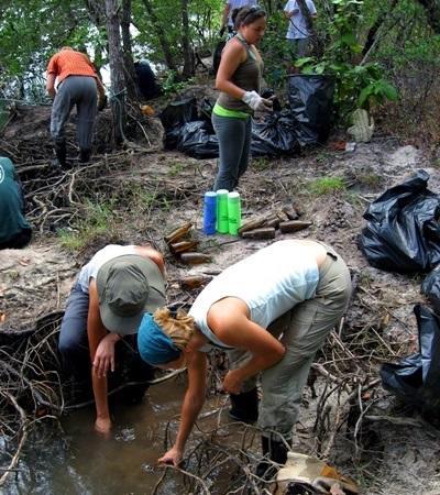 태국 환경보호 프로젝트 갭이어 봉사자들이 맹그로브 청소를 하고 있다