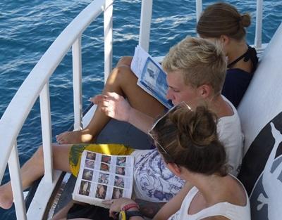 프로젝트 어브로드 봉사자들이 태국 크라비 해안가의 다양한 어종에 대해 공부하고 있다