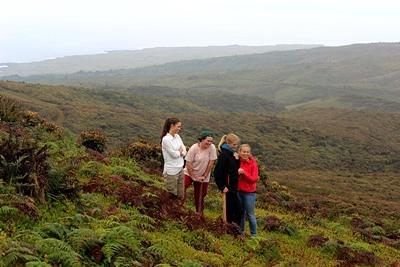 프로젝트어브로드 환경보호 프로젝트 봉사자들이 산 크리스토발에서 외래식물 통제 활동을 돕고있다