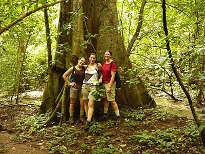 갭이어 봉사자들이 코스타리카 환경보호 프로젝트 활동 중 나무 아래서 포즈를 취하고 있다