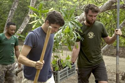프로젝트 어브로드 코스타리카 재식림 활동중인 봉사자들이 나무를 옮겨심고 있다