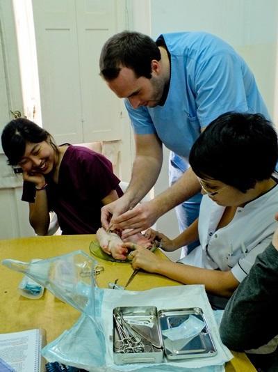 아르헨티나 클리닉에서아이들을 치료하는 의료선택 인턴