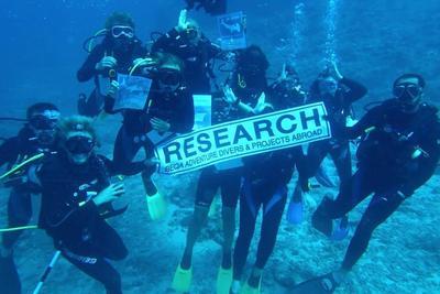 피지 상어보호 프로젝트에서 잠수에 참여한 참가자들