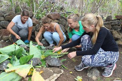 에콰도르 야생동물을 위해 고교생 봉사자들이 먹이를 주고 있다