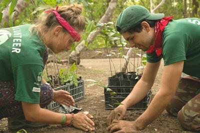 코스타리아 바라혼다 국립공원에서 프로젝트어브로드 봉사자가 현지직원과 나무를 심고 있다