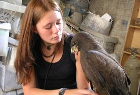 수의학 & 동물보호