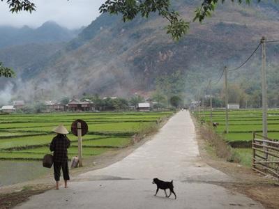 베트남의 아름다운 경지