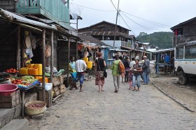 마다가스카르의 마켓의 참가자들
