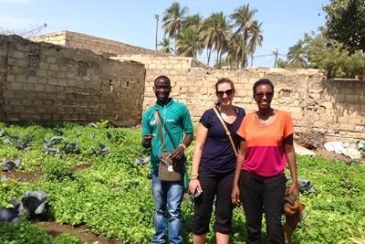 세네갈 마이크로 파이낸스 소액금융 프로젝트 봉사자가 지역주민들과 일하고 있다