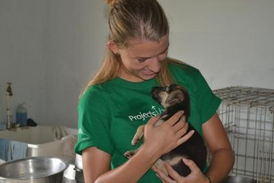벨리즈 동물보호 프로젝트 봉사자가 보호센터에서 강아지를 돌보고 있다