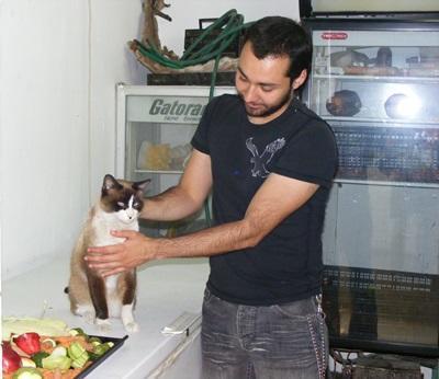 멕시코의 수의학 인턴이 고양이를 치료하고 있다